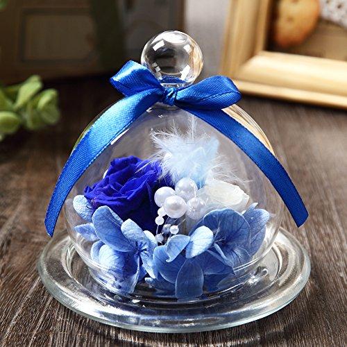 TEATSIGHT(ティートサイト) プリザーブドフラワー ギフト 枯れないお花 「ガラスポット入り バラ 2輪」 白×青 616Ch 2BOvivL