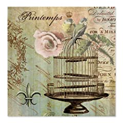 CafePress Vintage French Shabby chic birdcage Shower Curtain - Standard White