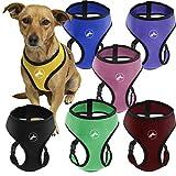 Oxgord Pet Control Harness for Dog & Cat Easy Soft Walking Collar, Small, Black