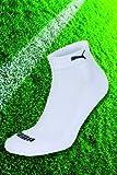Puma Socken Unisex Quarters 2p White Gr. 39/42