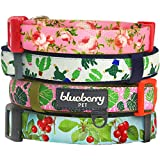 Blueberry Pet 3/8-Inch The Cherry Garden Designer Basic Polyester Nylon Dog Collar for Puppy, X-Small, Turquoise