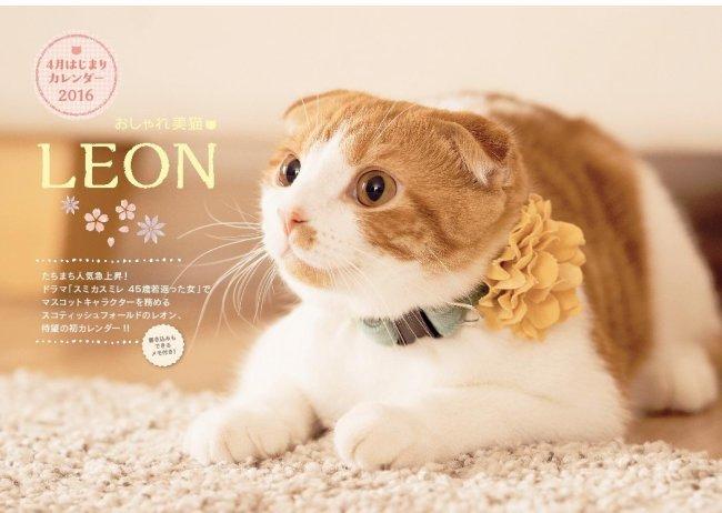 おしゃれ美猫 LEON(レオン)4月はじまりカレンダー2016
