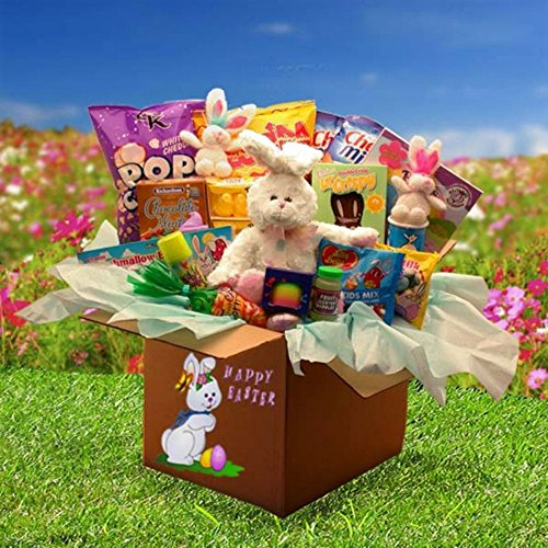 Gift Basket Drop Shipping Easter of Fun Family Deluxe Care Package