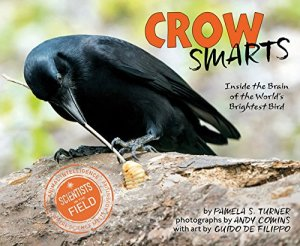 Crow Smarts: Inside the Brain of the World's Brightest Bird (Scientists in the Field Series) by Pamela S. Turner | Featured Book of the Day | wearewordnerds.com