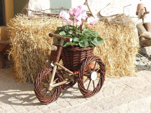 moebel direkt online Blumenständer (Dreirad, Maße ca.: HxBxT 38x25x50 cm)