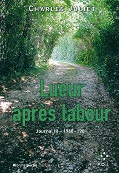 Journal, III:Lueur Après Labour: (1968-1981)