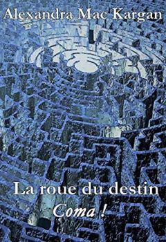 Livres Couvertures de La roue du destin : Coma !