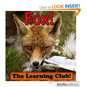 Fox! Learn About Fox And Learn To Read - The Learning Club! (45+ Photos of Fox)