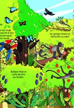 Livres Couvertures de Jungle - P'tits curieux Usborne