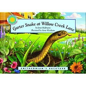 Garter Snake at Willow Creek Lane - a Smithsonian's Backyard Book