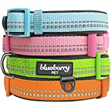 "Blueberry Pet Basic Collars for Dogs 5/8"" Small 3M Reflective Spring Pastel Baby Blue Adjustable Padded Dog Collar with Tag Holder, Matching Harness Available Separately"