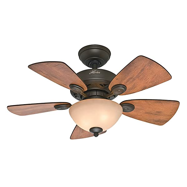 Best Ceiling Fan Hunter Watson 52090