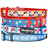 Blueberry Pet 3/8-Inch Spring Scent Inspired Round Flower Polyester Nylon Puppy Dog Collar, X-Small, Aquamarine Blue