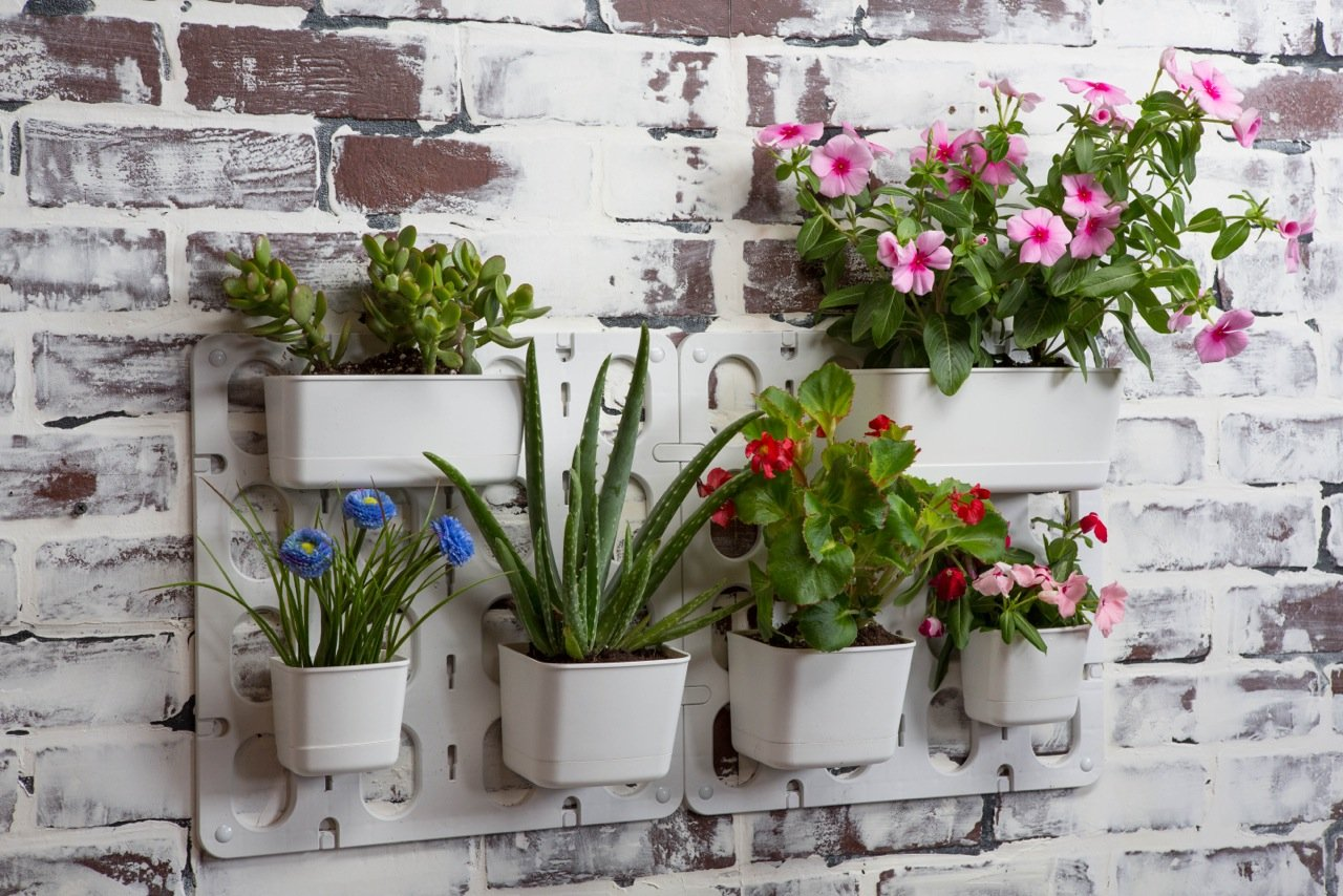 Hanging Wall Planters Indoor