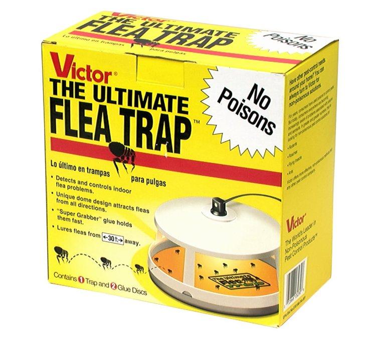 Victor Flea Trap
