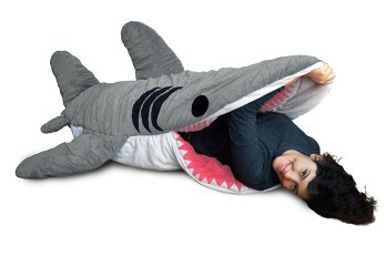 cool sleeping bag