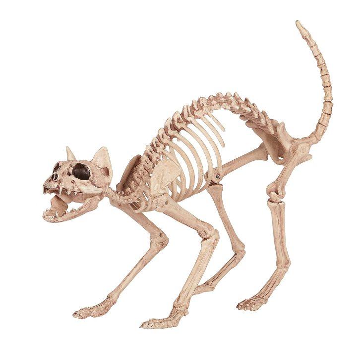 2 halloween skeleton yard flamingos seasons skeleton cat - Skeleton Decoration Halloween
