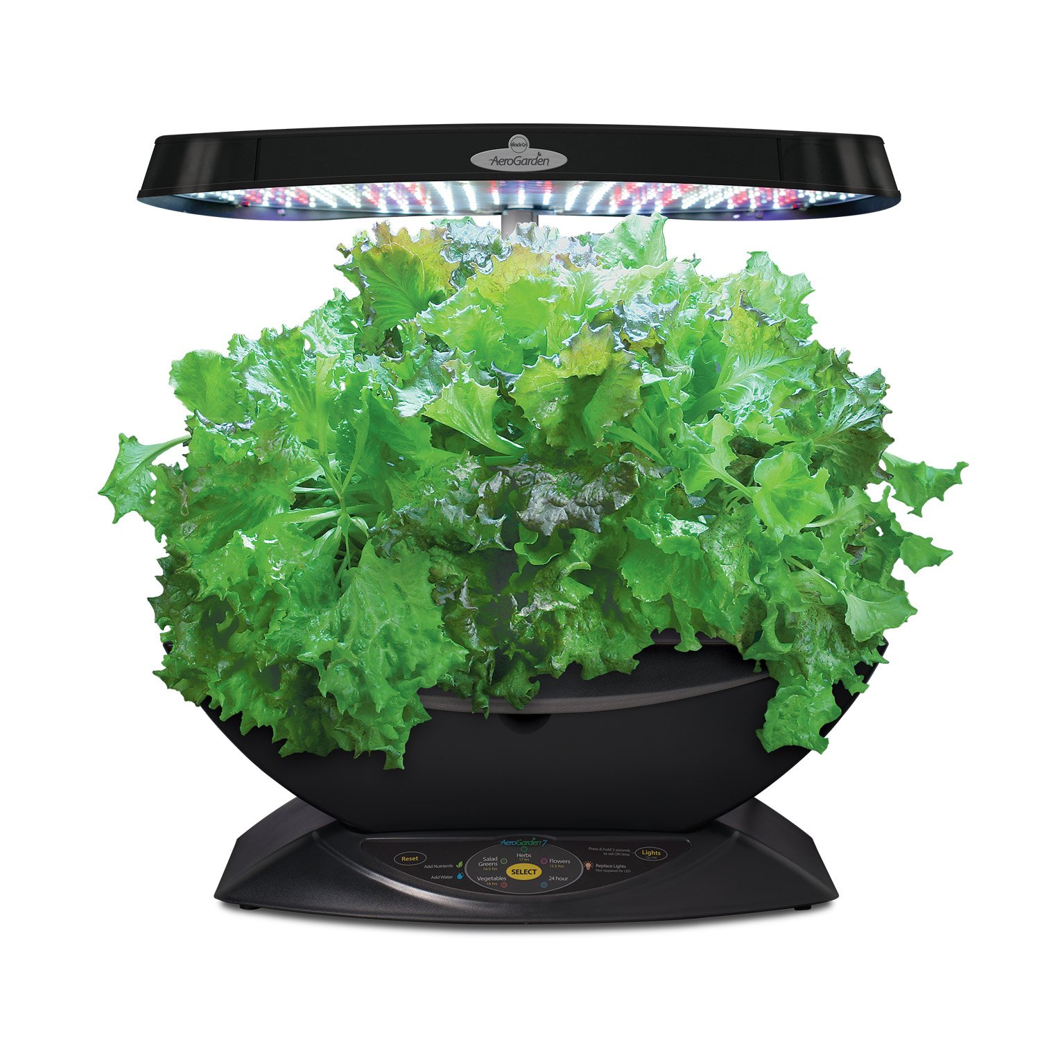 Best Led Grow Lights Herbs
