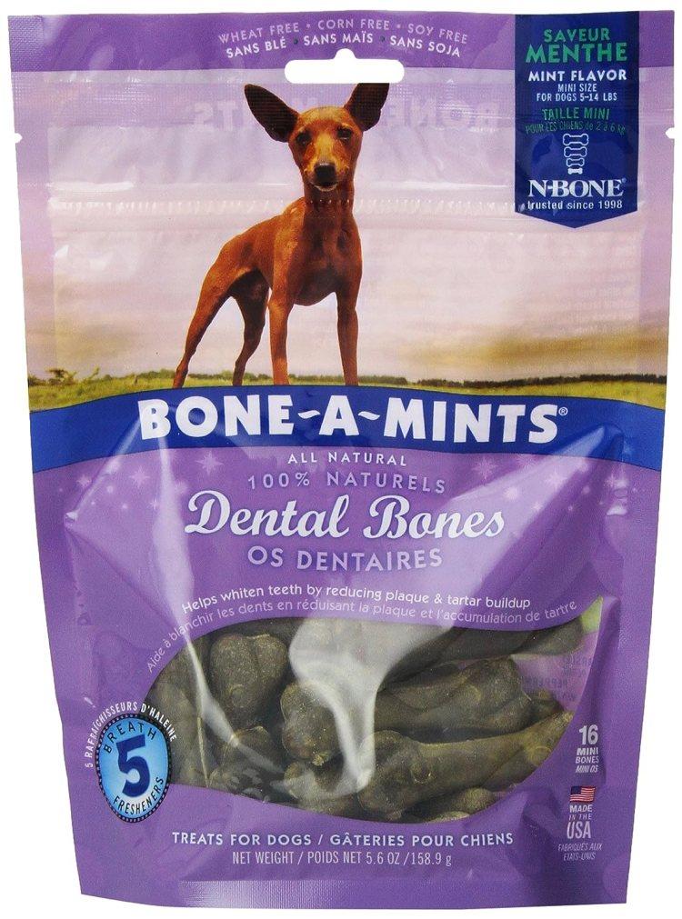 Natural Dog Breath Freshener