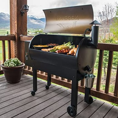 The Best Of 2019: Traeger Renegade Elite Grill Reviews 7