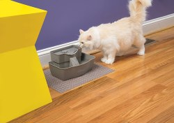 PetSafe-Drinkwell-Multi-Tier-Pet-Fountain