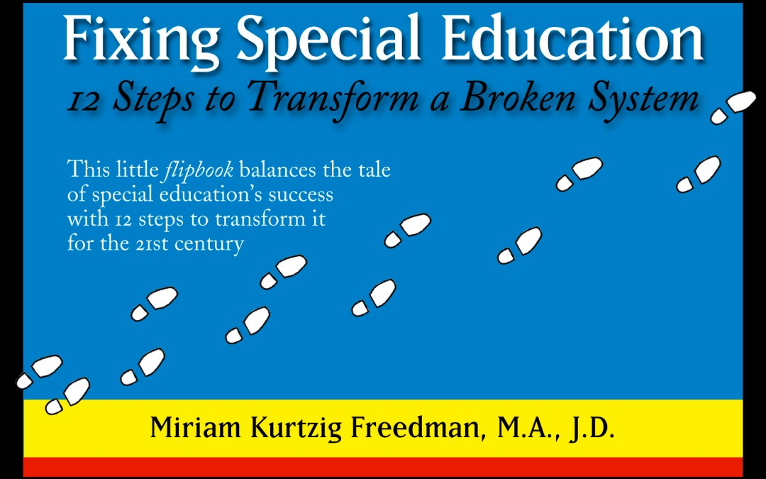 Fixing Special Education: 12 Steps to Transform a Broken System