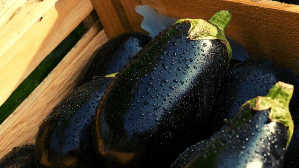 Баклажаны-рецепт для похудения