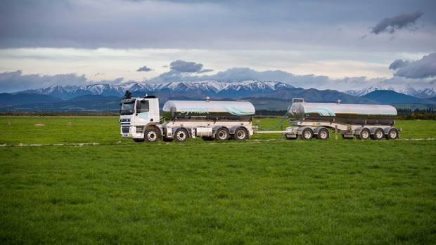 Synlait Milk Share Price Plunges by 11%
