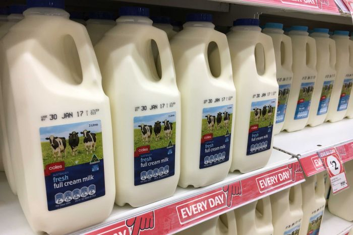 Economics professor says milk should be $1.56 a litre in 2019, something dairy industry hopes for