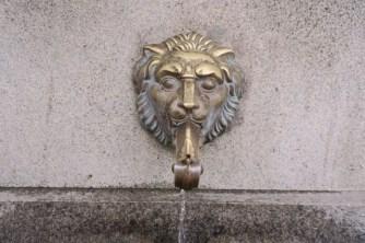 Lion-Symbol of Sofia