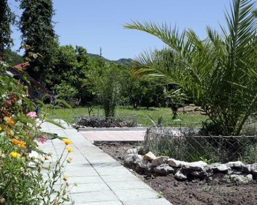Фото двора