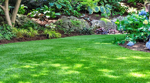 Magnifique gazon, belle pelouse, gazon anglais