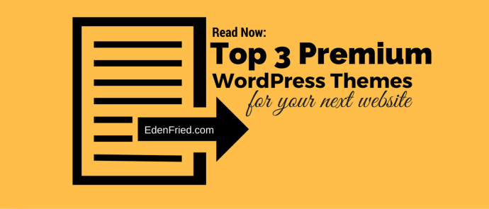 top 3 premium wordpress themes for your website