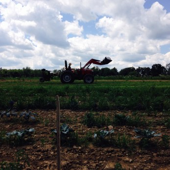 Katie tractoring on under a nice blue sky