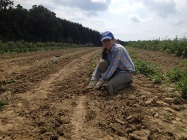 Arely helps plant cole crops in Elsama