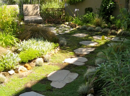 Decomposed granite and recycled concrete paver footpath with creeping Thyme