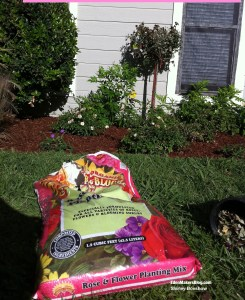 gardner-and-bloome-rose-and flowering-plant-soil-edenmakers-blog
