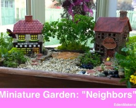 Miniature-Garden-Village-Shirley-Bovshow with two buildings- one is candy store and next door is the dentist