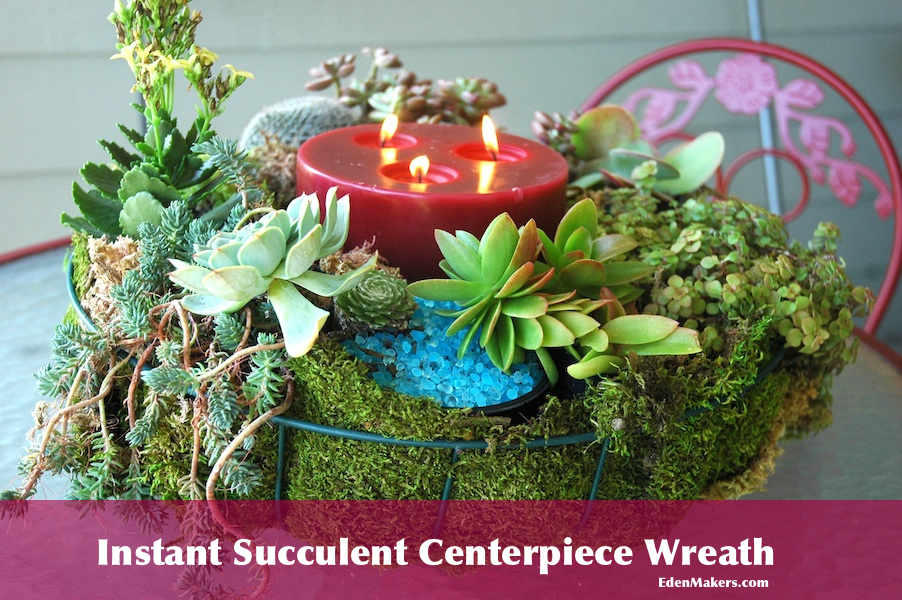 Instant Succulent Centerpiece Wreath For Holidays