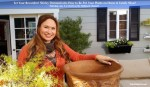Shirley-Bovshow-how-to-repot-your-plants-home-and-family