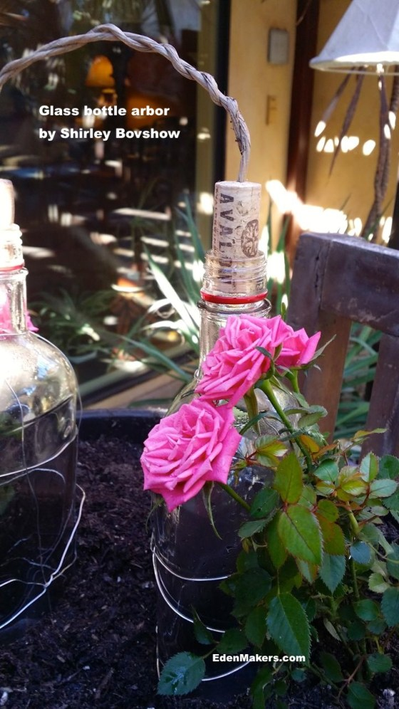 pink-mini-rose-growing-on-mini-arbor-perfect for Valentines edenmakers