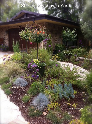 Shirley-Bovshow-Lawnless-Front-Yard-with-low-water-plants-edenmakers-blog