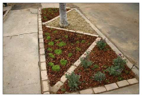 patterned parkway garden