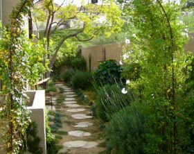 narrow side yard small garden