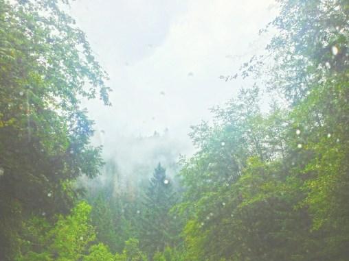 rainy oregon