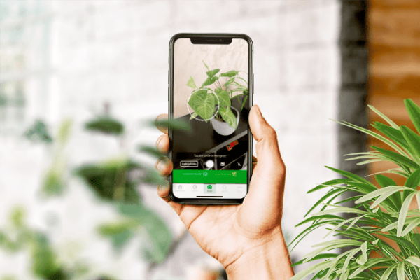 Eden Tech Labs build the most popular plant identification native mobile app