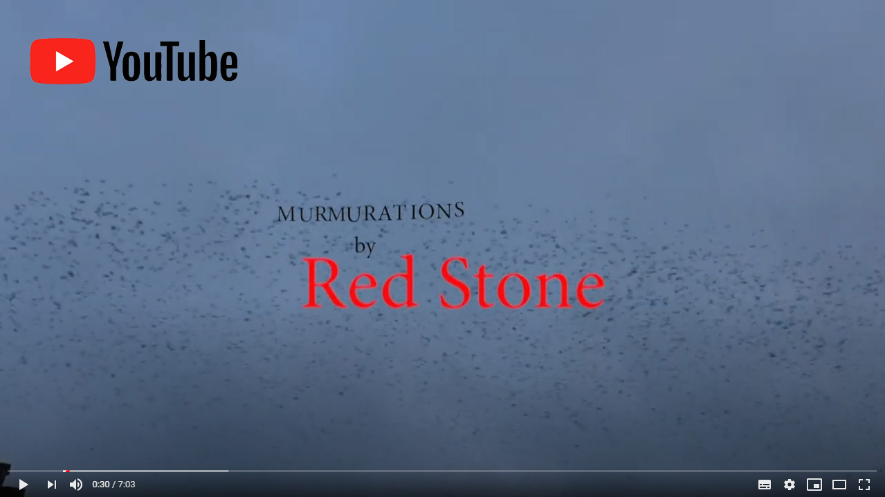 Murmurations by Red Stone