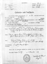 1855 Anna Terk Birth certificate