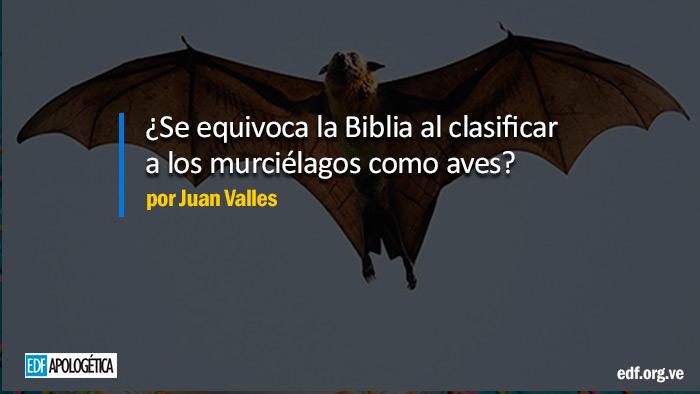 ¿La Biblia clasifica a los murciélagos como aves, es errónea?