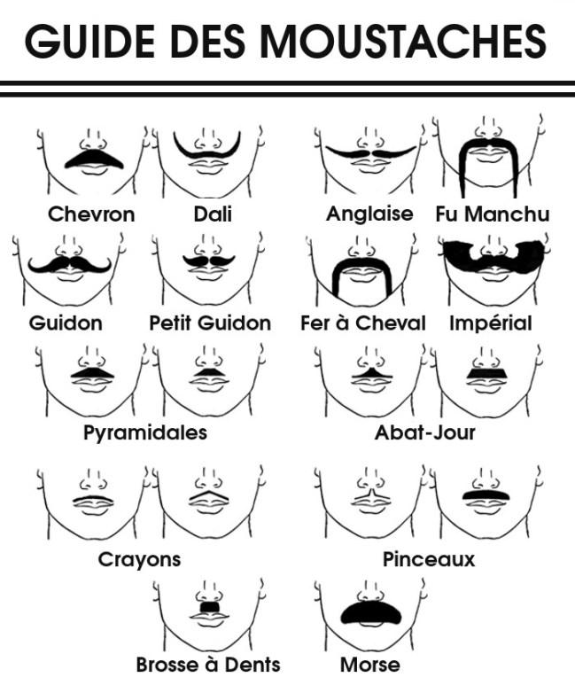 Comment choisir sa moustache guide